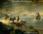 Access specialized nationwide network of state-based life science web sites